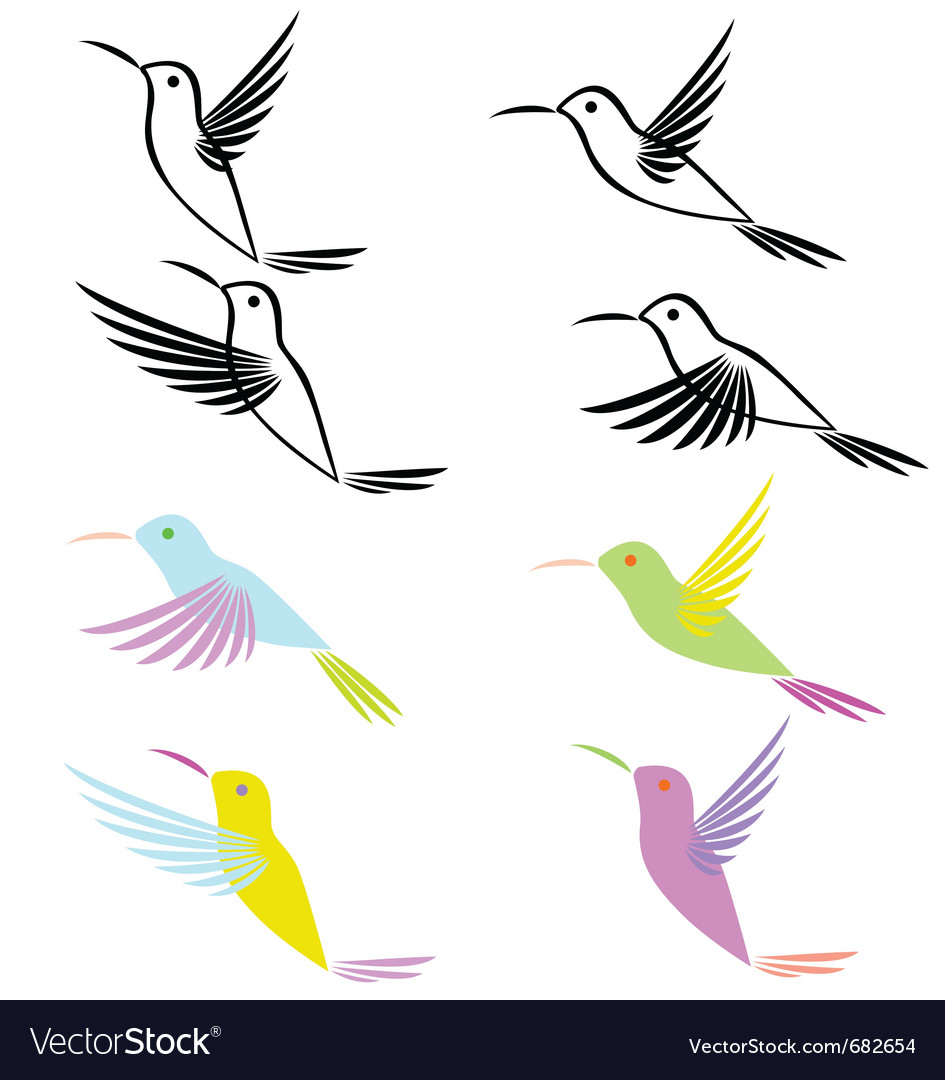 Hummingbird vector