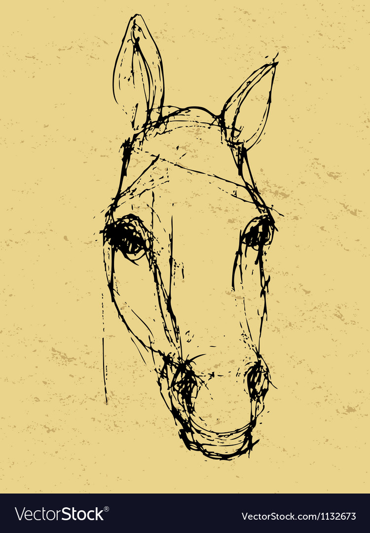Horse sketch on paper vector