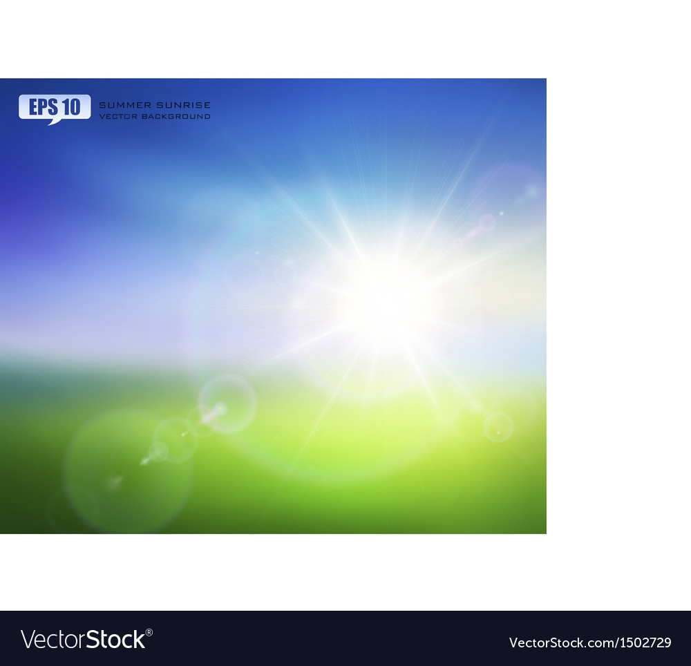 Summer sunrise vector