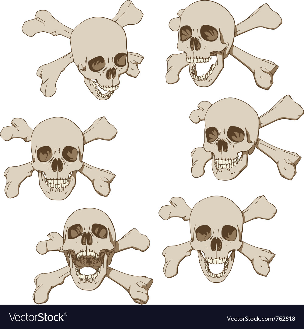 Human skull with crossbones vector