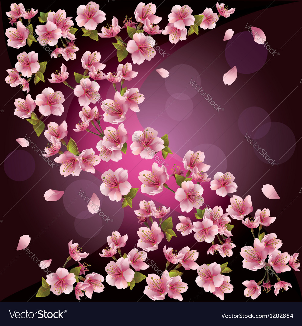 Background with sakura japanese cherry tree vector