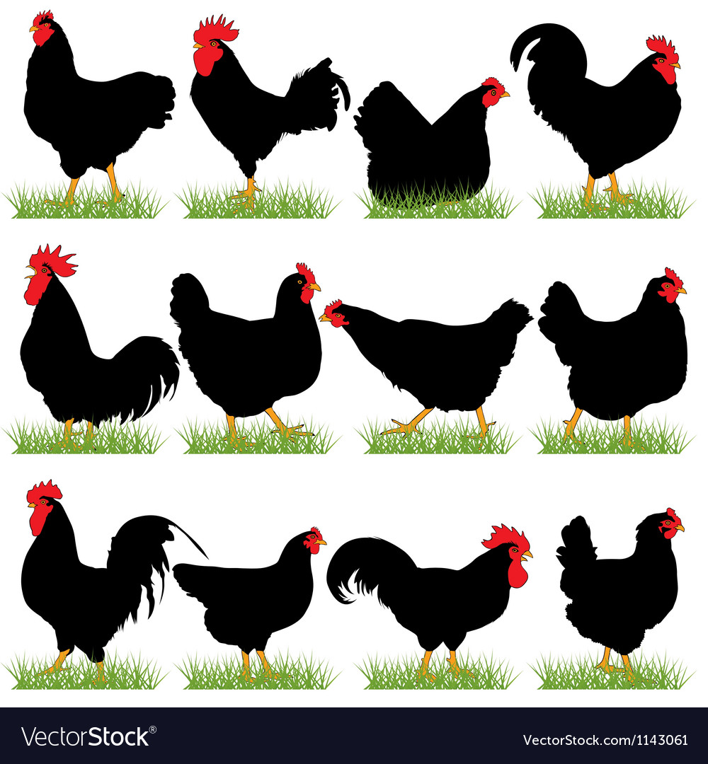 12 roosters and hans silhouettes set vector