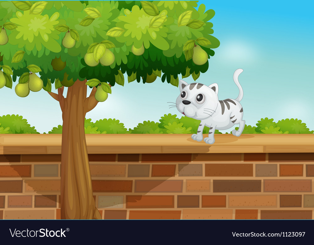 A cat on a wall vector