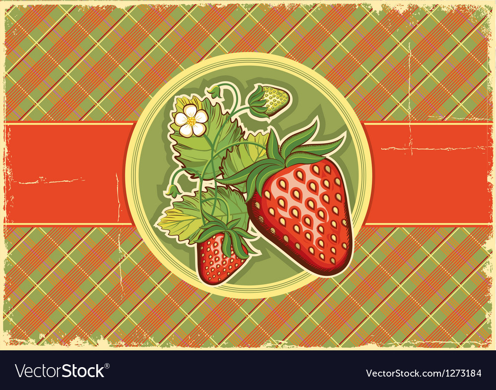 Strawberries vintage background vector
