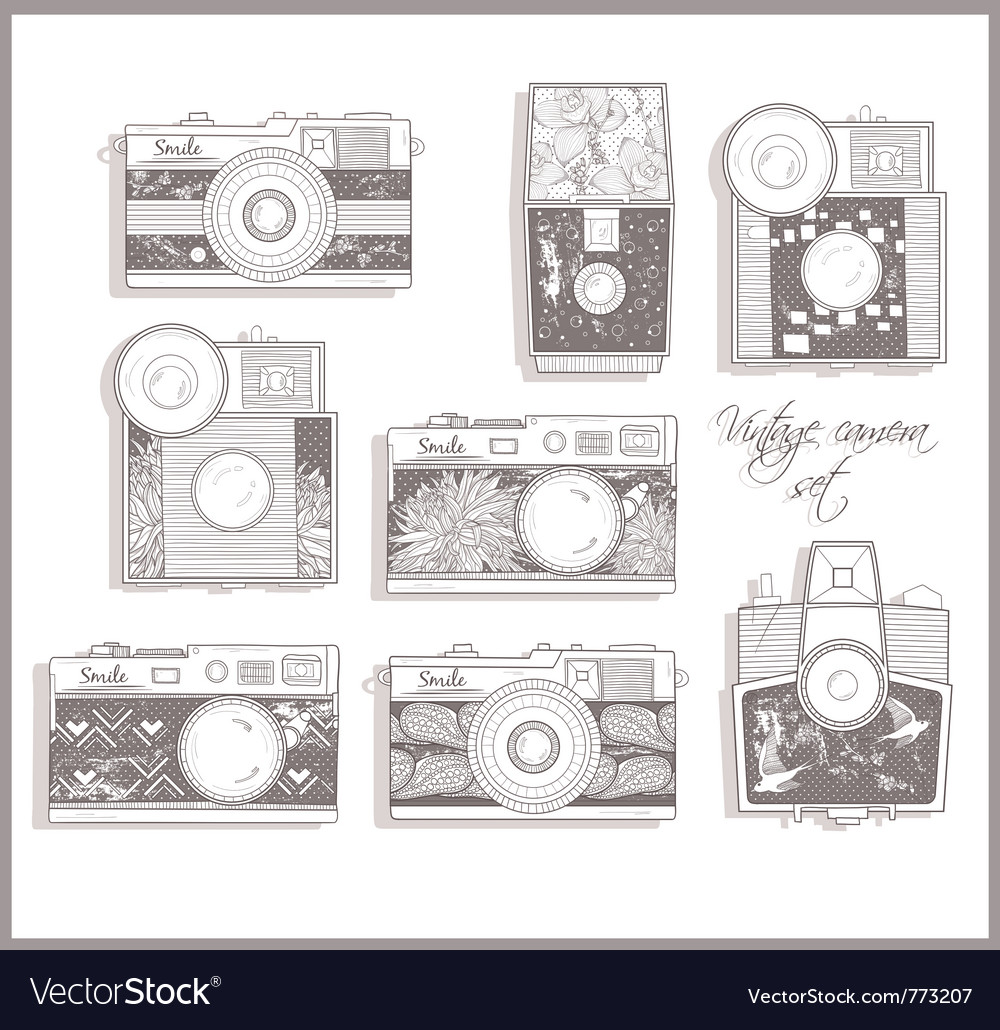 Retro photo cameras set with floral pattern vector
