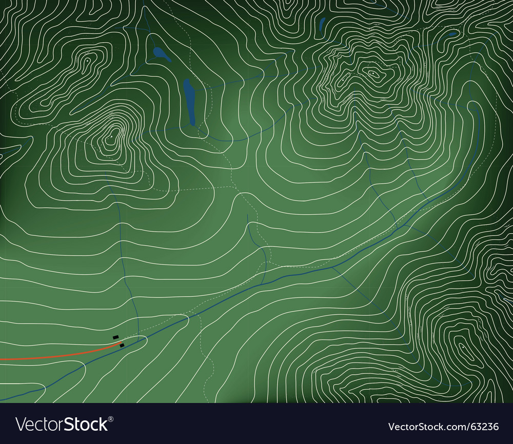 Topographic map vector