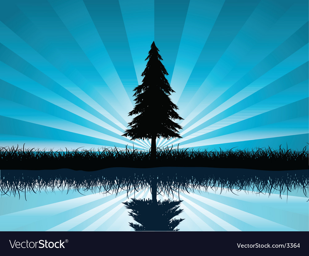 Solitary fir tree vector