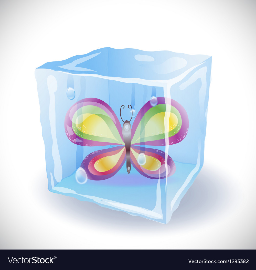 Ice cube with butterfly vector