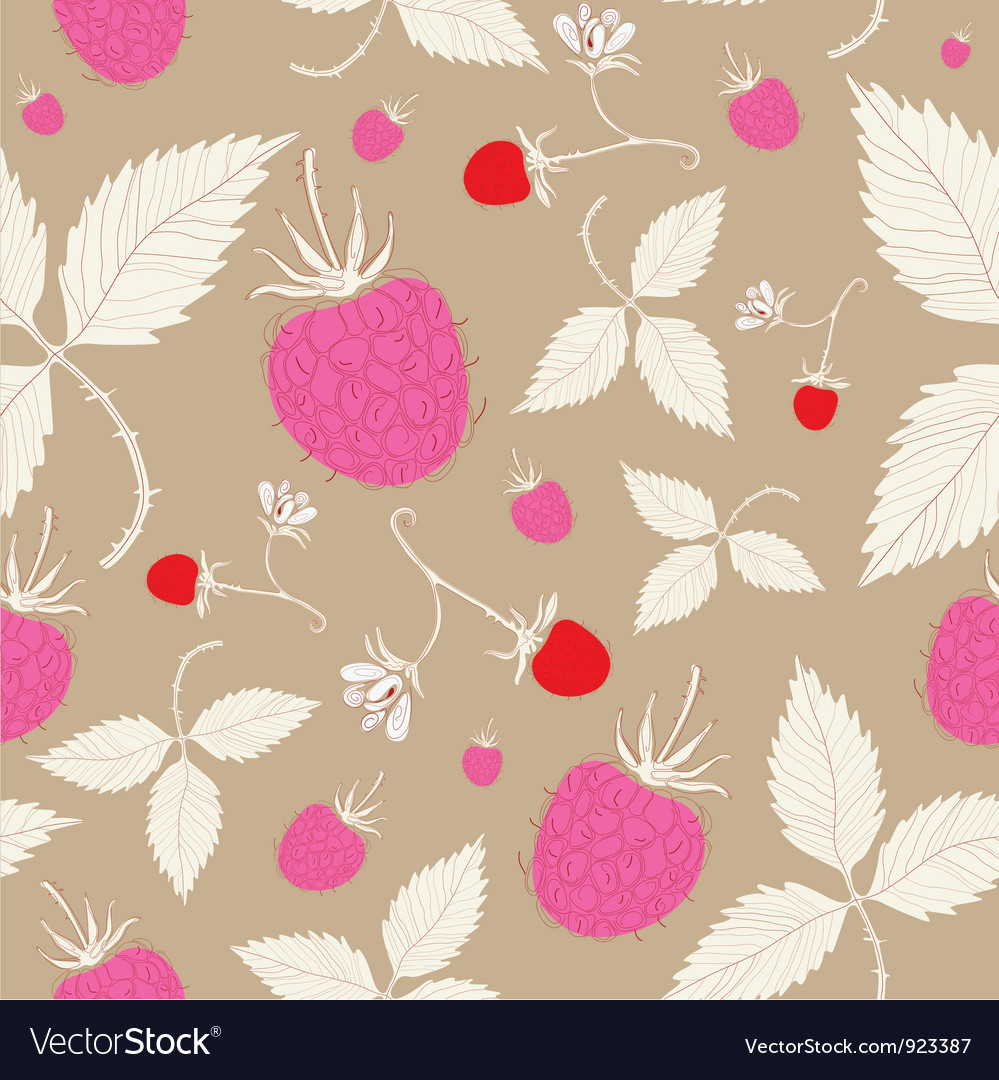 Vintage raspberry pattern background vector