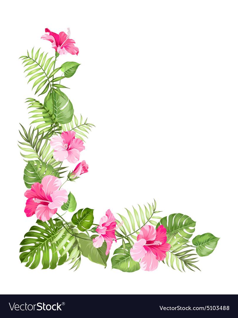 Tropical Flower Garland Vector By Kotkoa Image 5103488