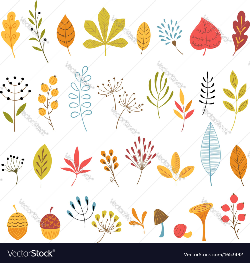 Autumn floral design elements vector