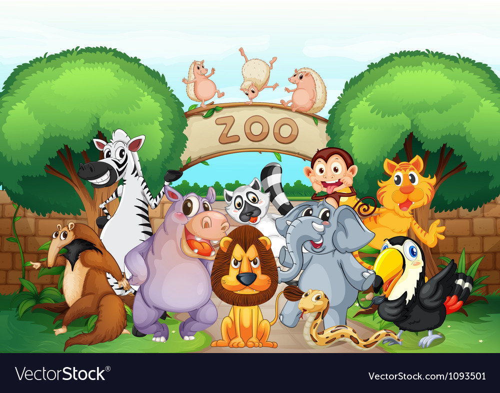 Zoo and animals vector