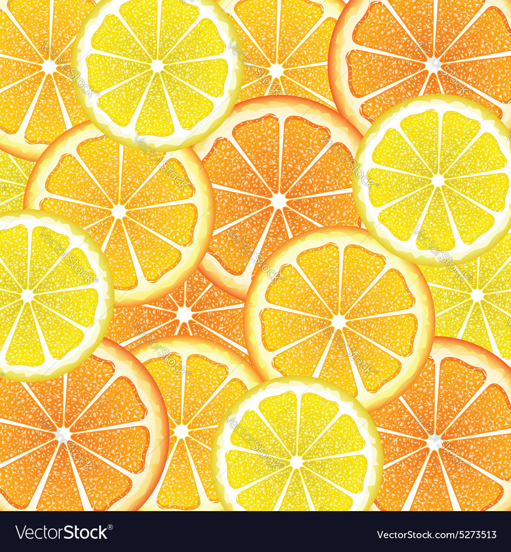 Various citrus slices6 vector by artshock image 5273513