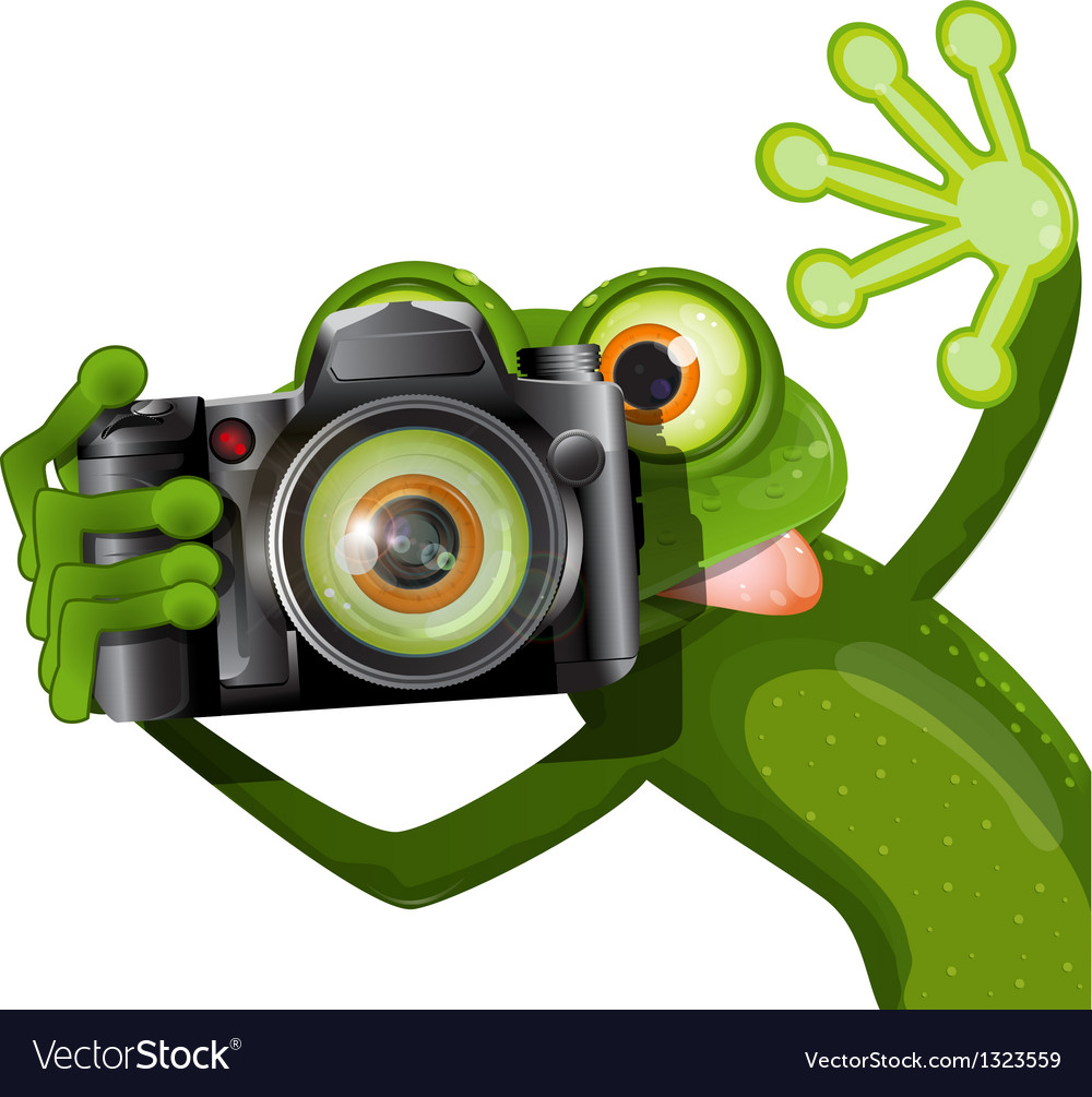 Frog with a camera vector