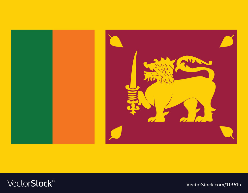 Sri lanka flag vector