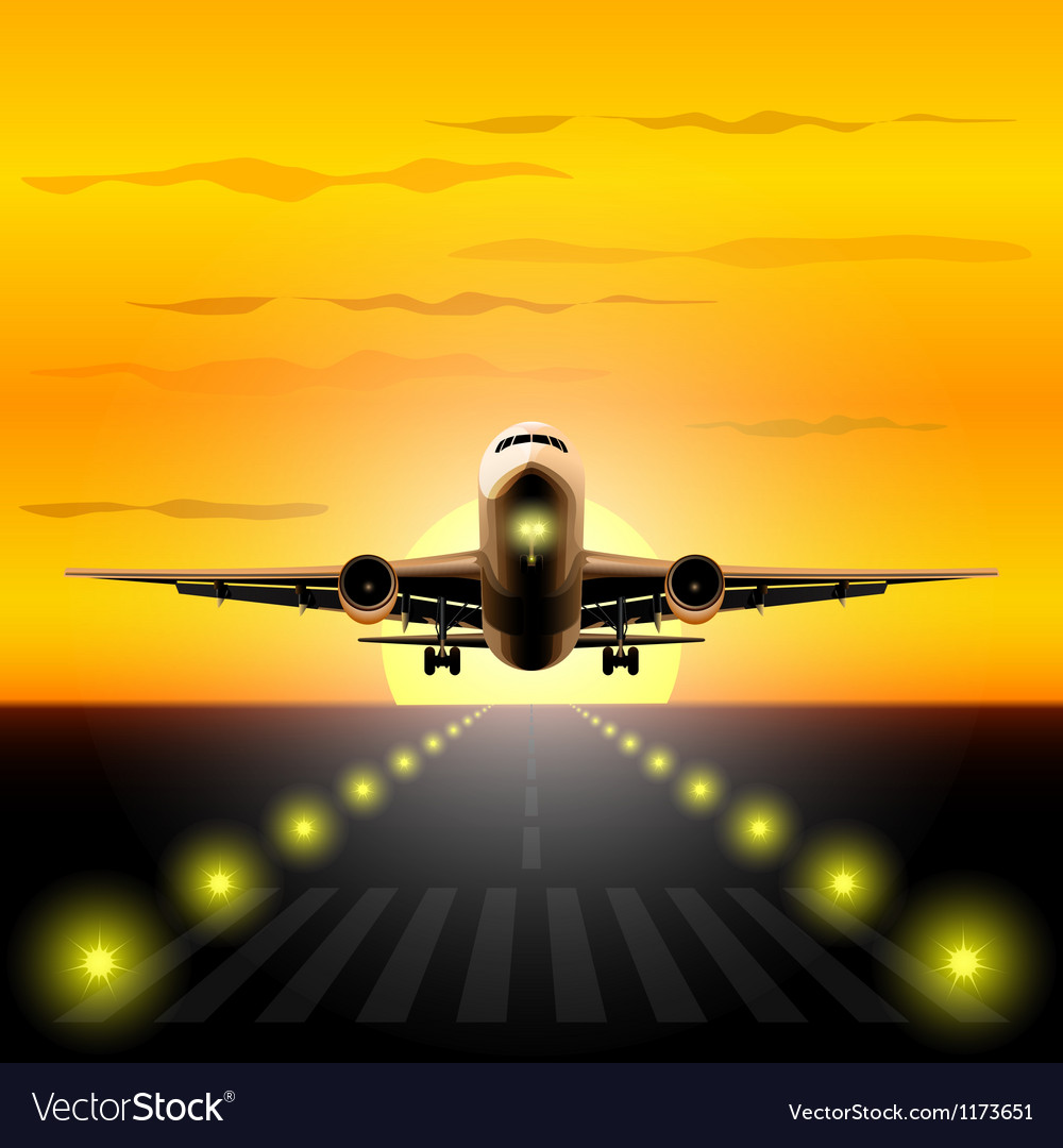 Airliner landing at sunset vector