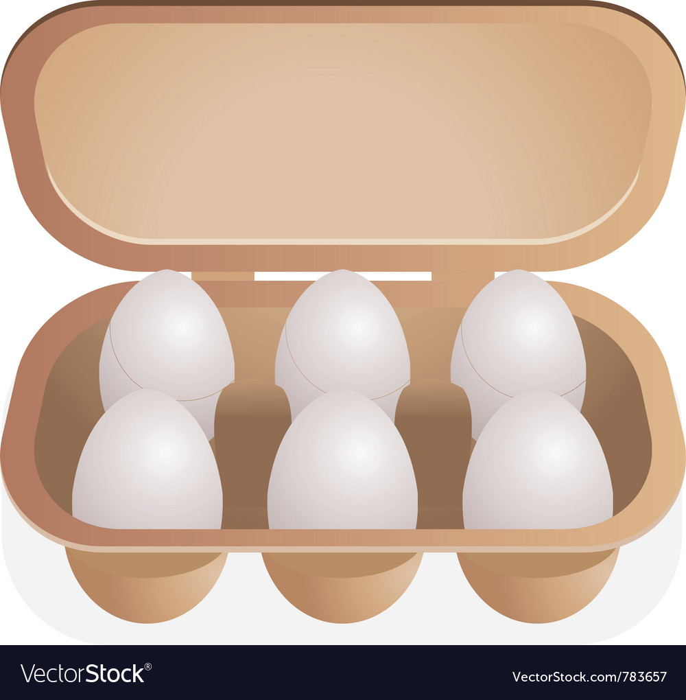Eggs in box vector