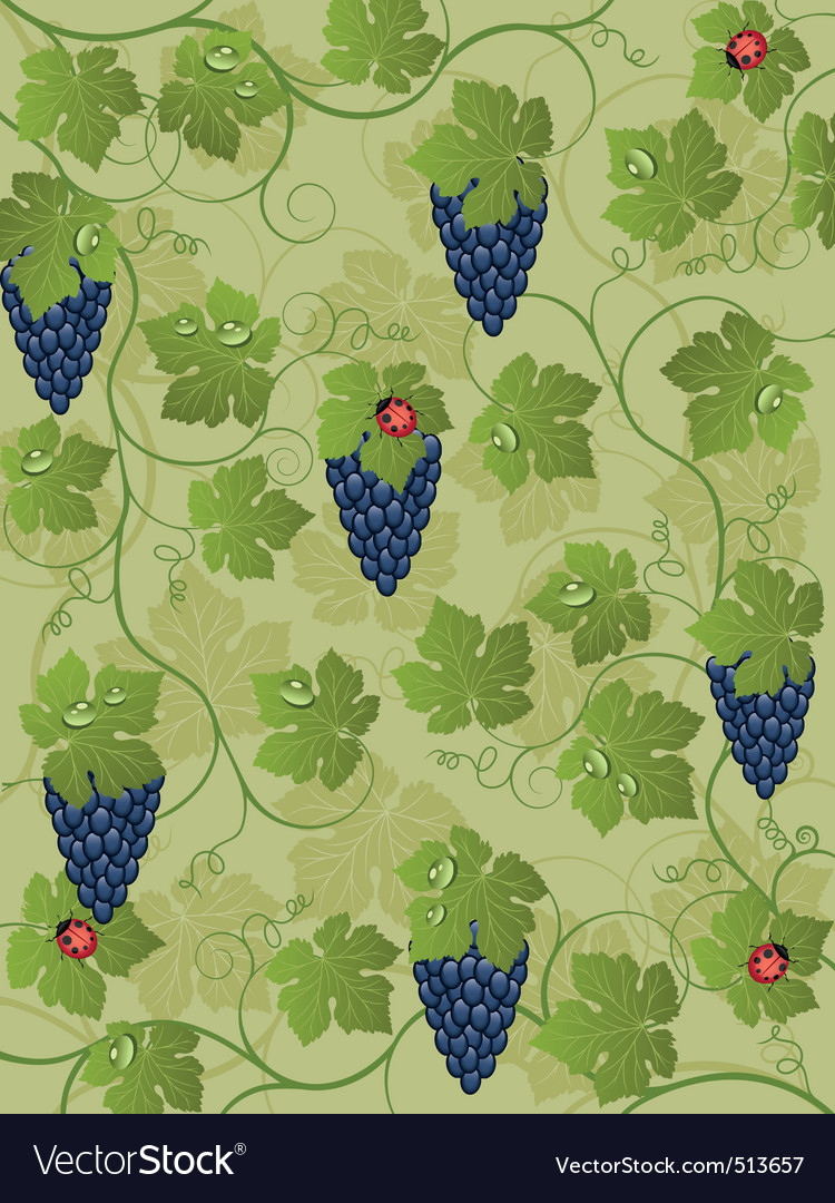 Floral background with vine vector