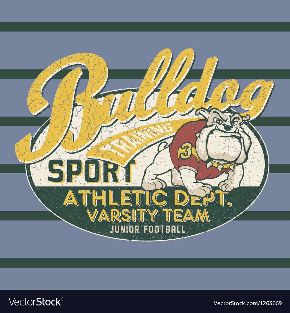Bulldog football team vector