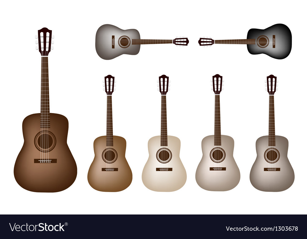 Beautiful vintage classical guitars vector