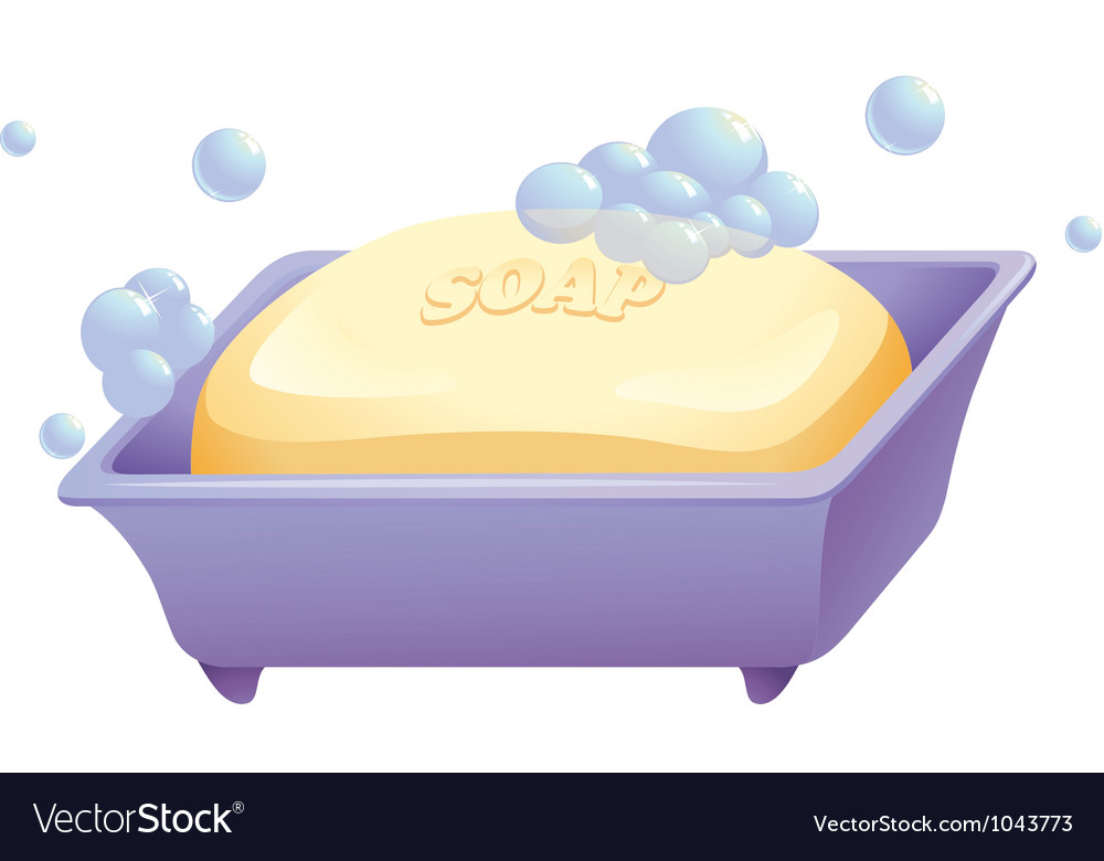 Soap and case vector