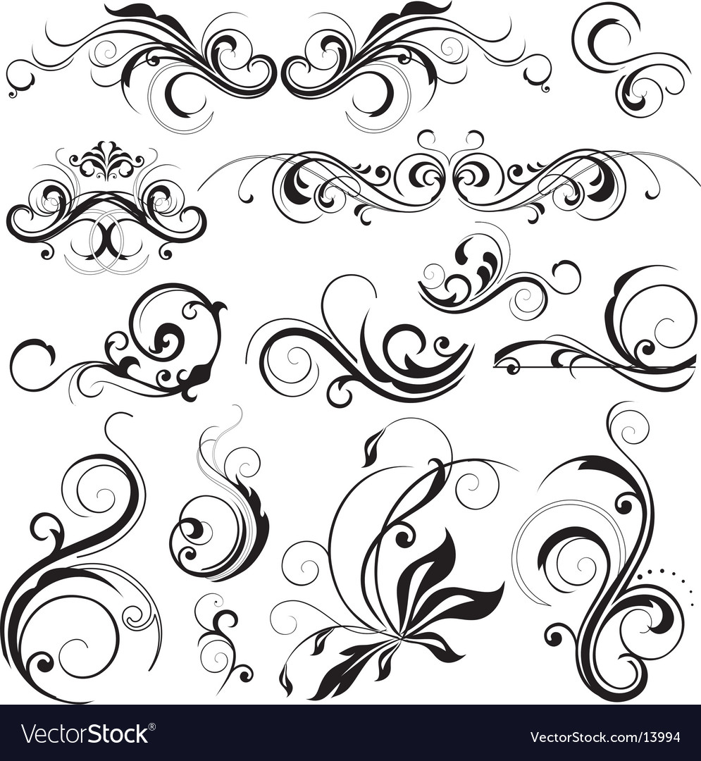 Floral elements vector