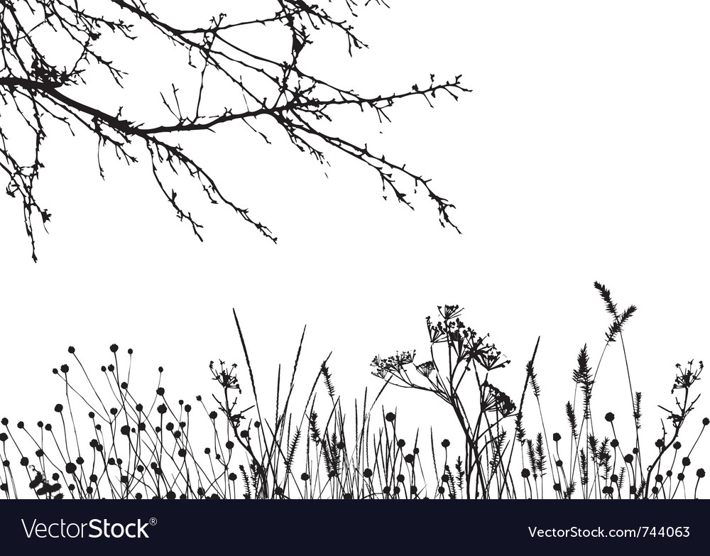 Grass tree silhouette details are separated vector