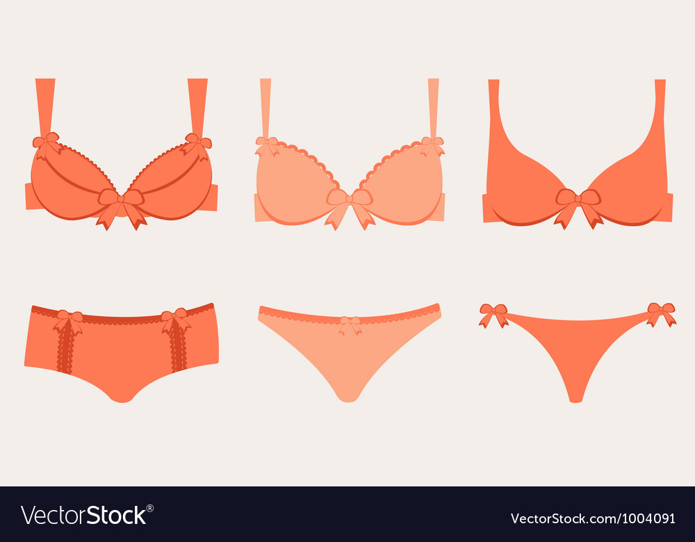 Lingerie collection vector