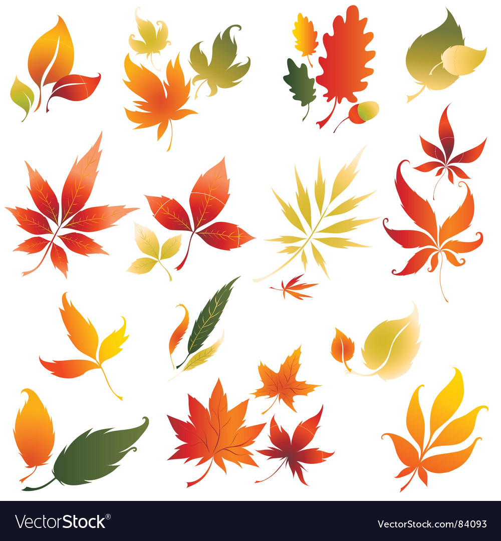 Autumn design vector