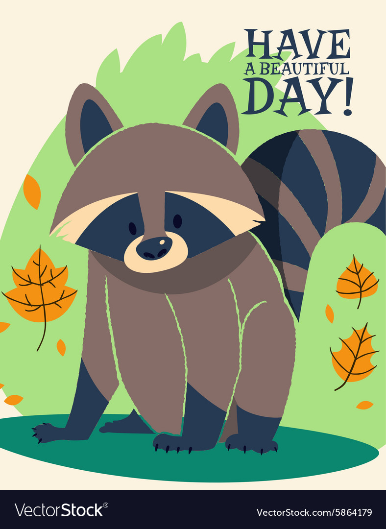 Cartoon raccoon design