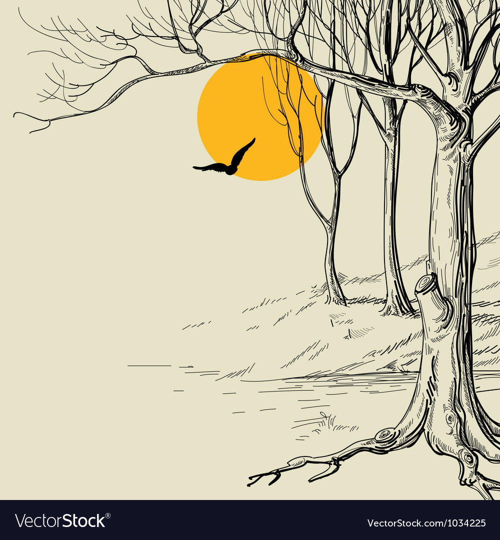 Moon in the forest sketch vector