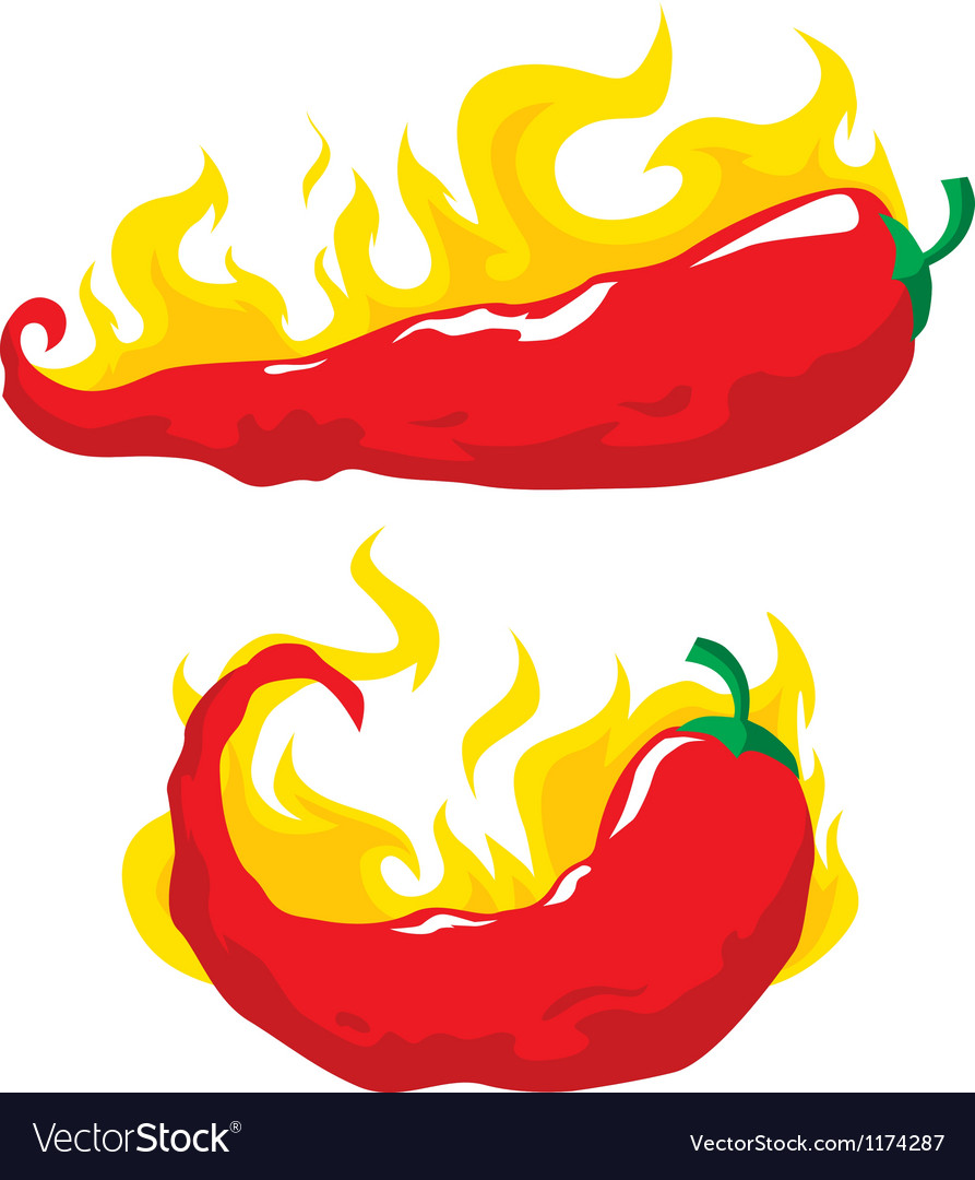 Chili pepper in fire vector