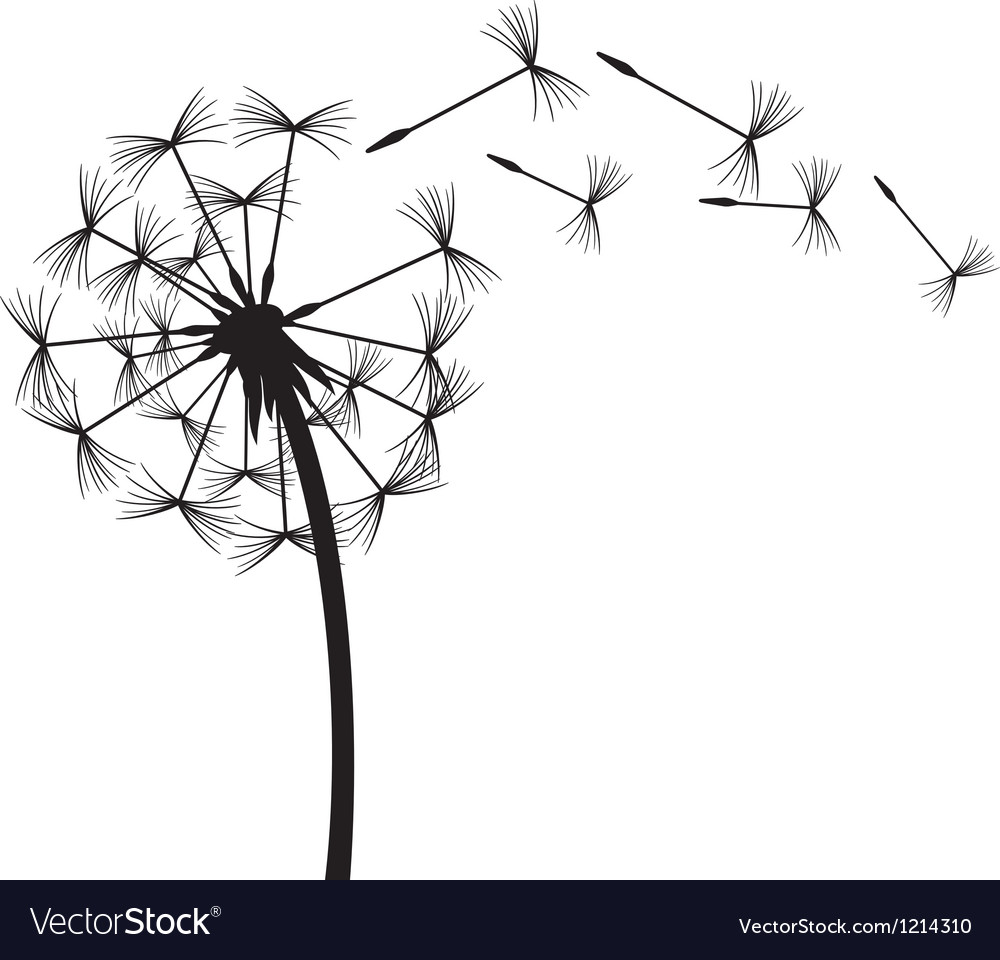 Dandelion in the wind vector