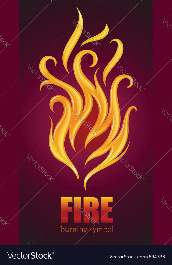 Burning flame of fire vector