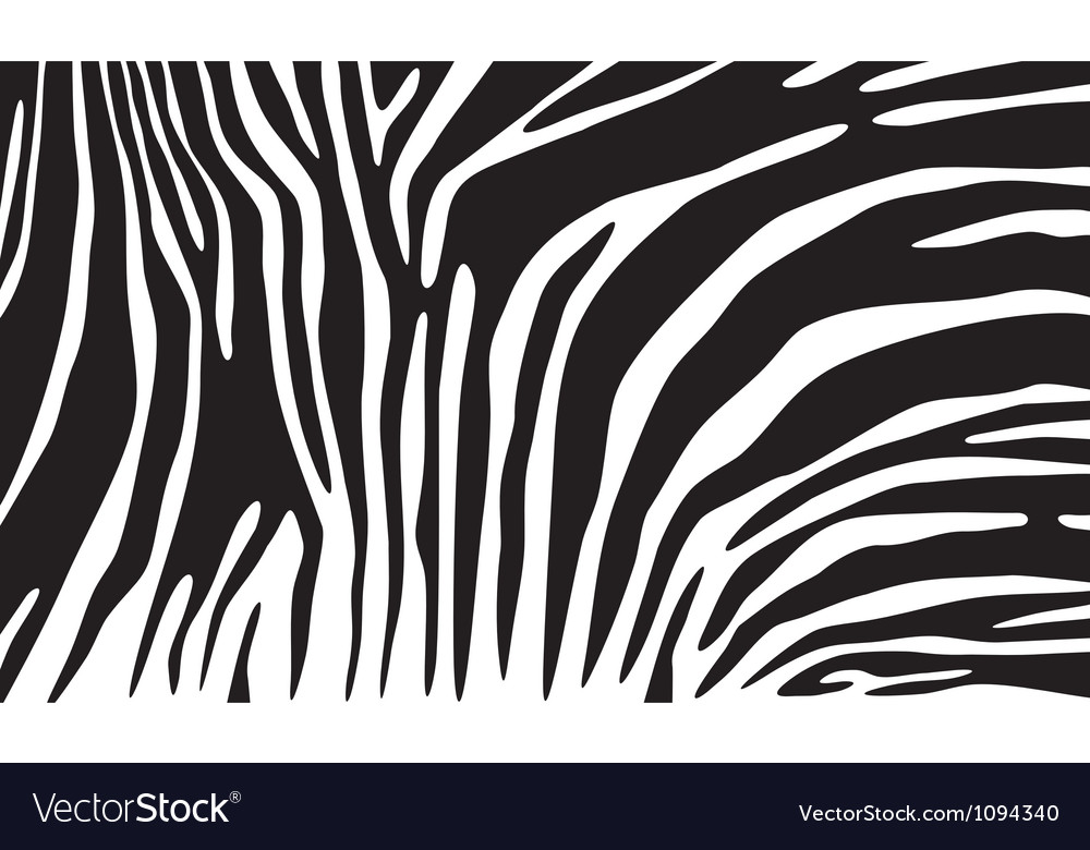 Zebra skin background vector