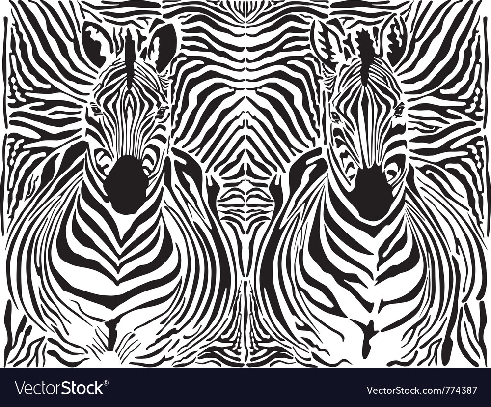 Zebra pattern background vector