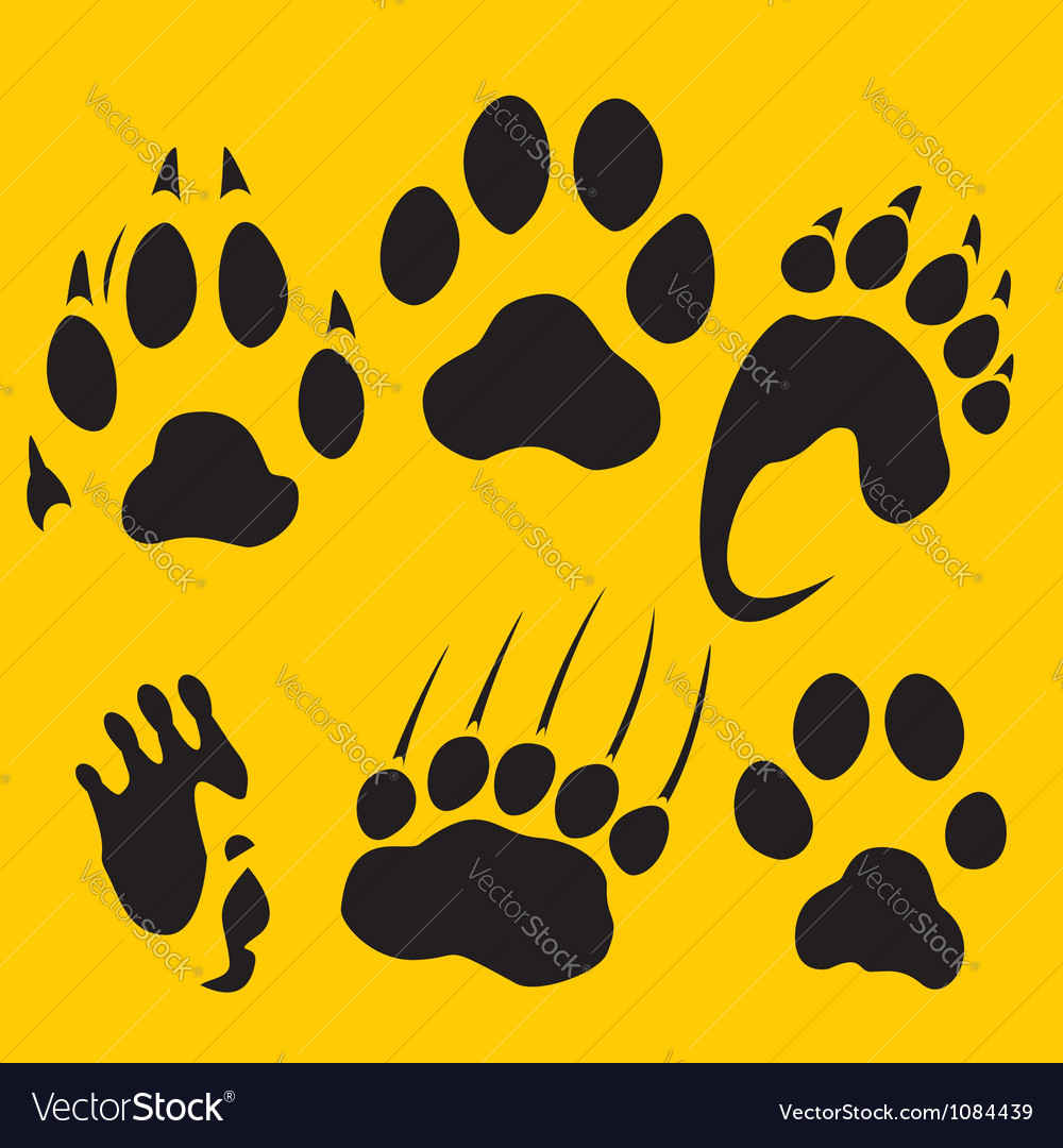 Footprints set  vinylready vector