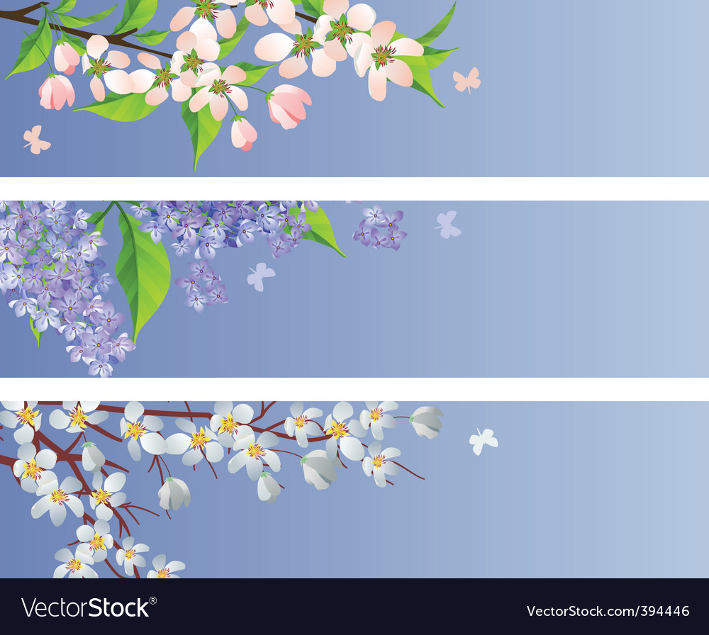Set of blossoming branches vector