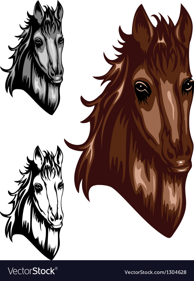 Horse color set vector