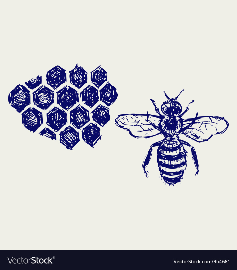 Working bee on honeycells vector