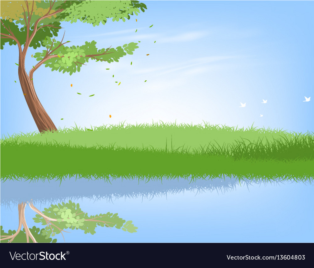 Tree and lake