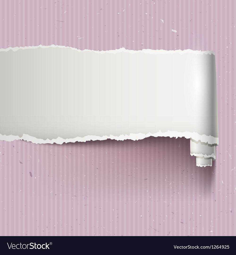 Banner with torn paper vector