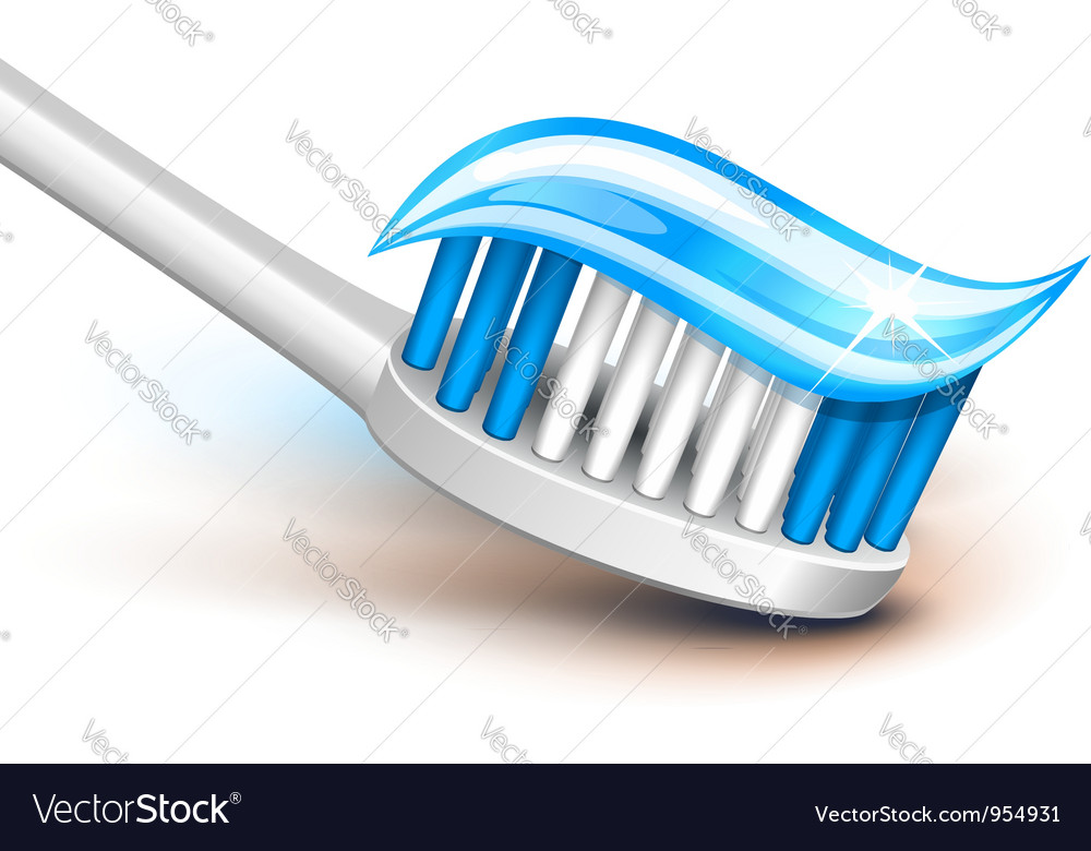 Toothbrush gel vector