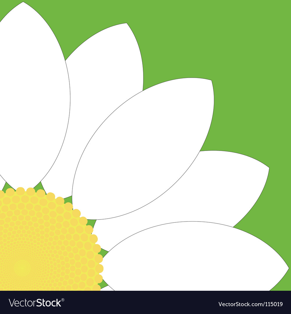 White flower quarter vector