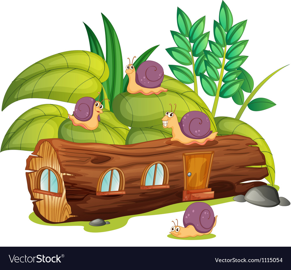 Snails and a wood house vector