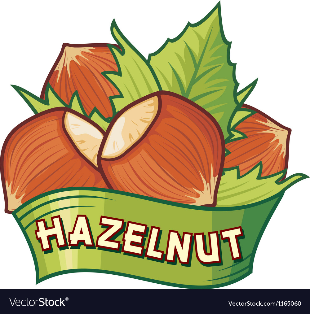 Hazelnut label vector