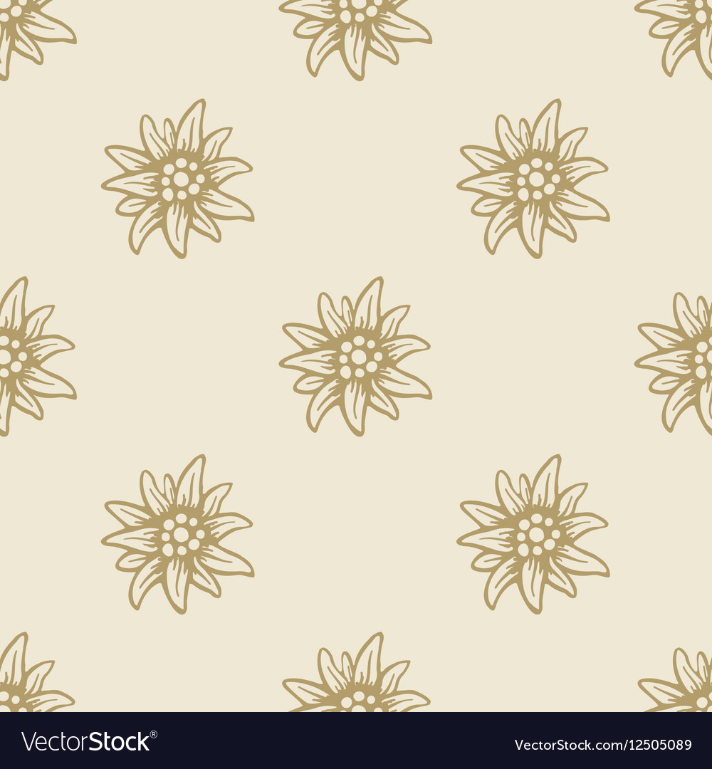Edelweiss Flower Seamless Pattern Background Vector By