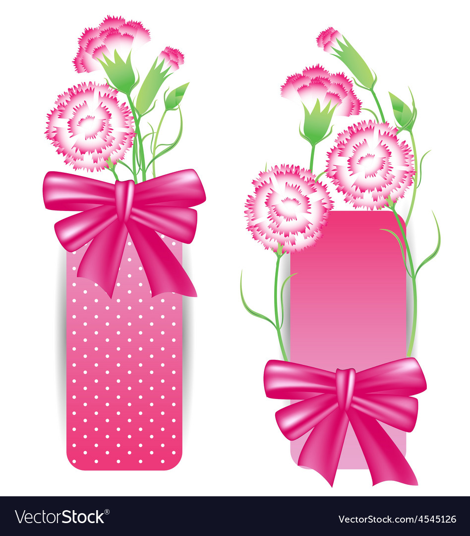 Ribbon with pink carnation for mothers day card