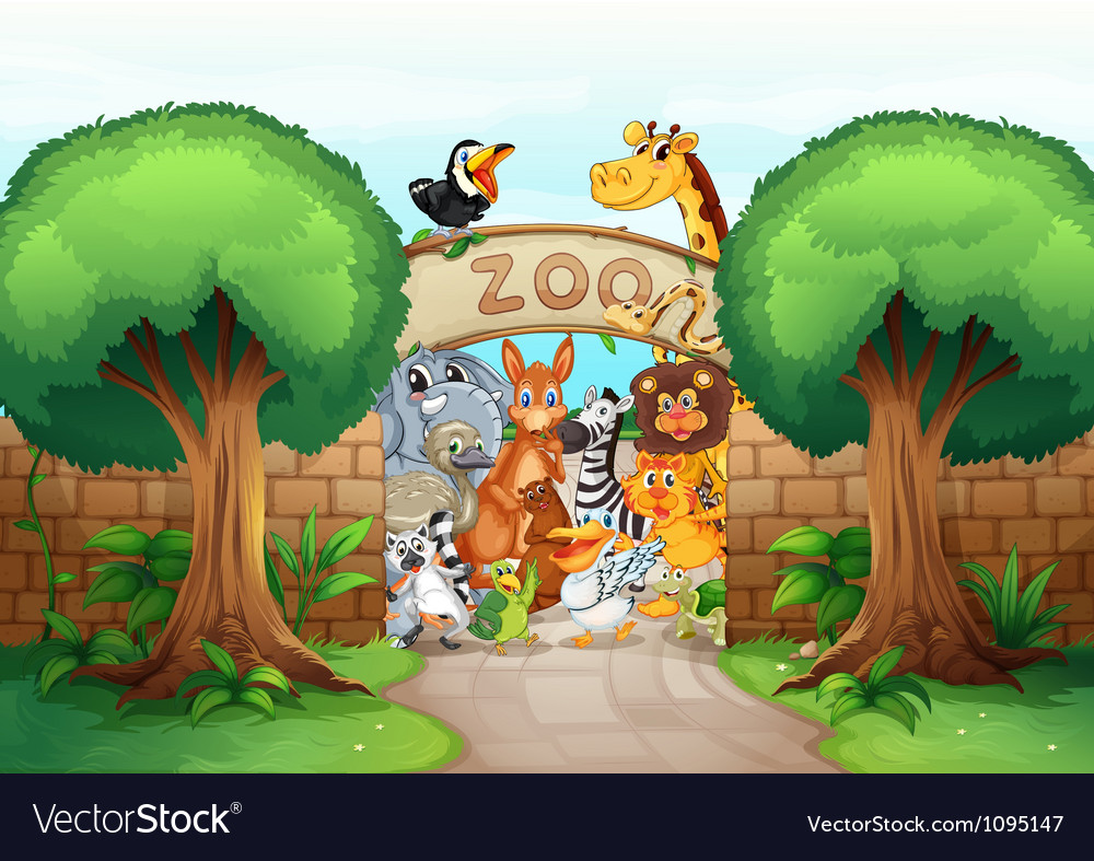 A zoo and animals vector