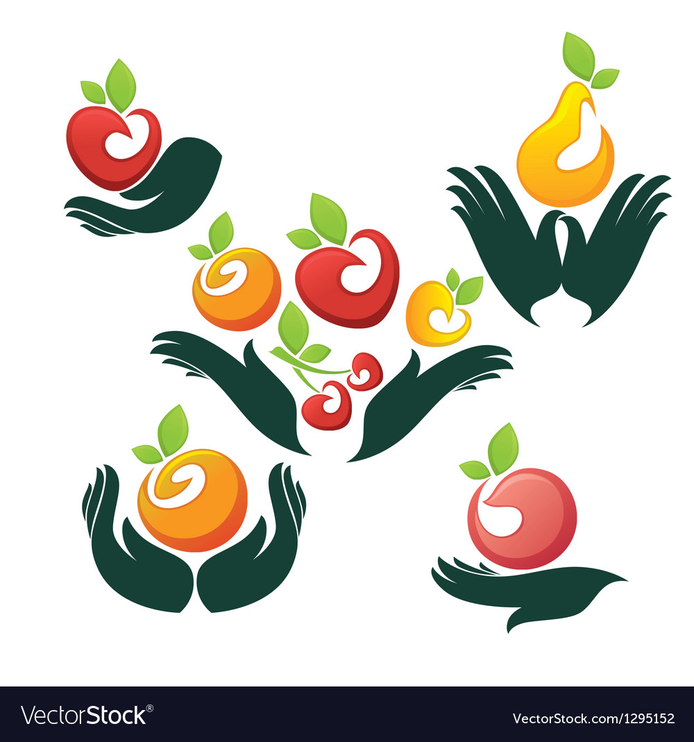 Hands and fruits vector